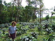 Jan at her coffee farm in Panama