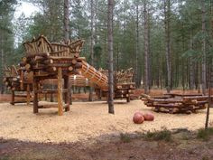 Moors Valley Forest Country Park, Giant Bird Nests - landscape design by Davies White Ltd