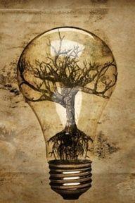 light bulb tree tattoo