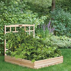 Small Cheshire Garden Bed with Trellis