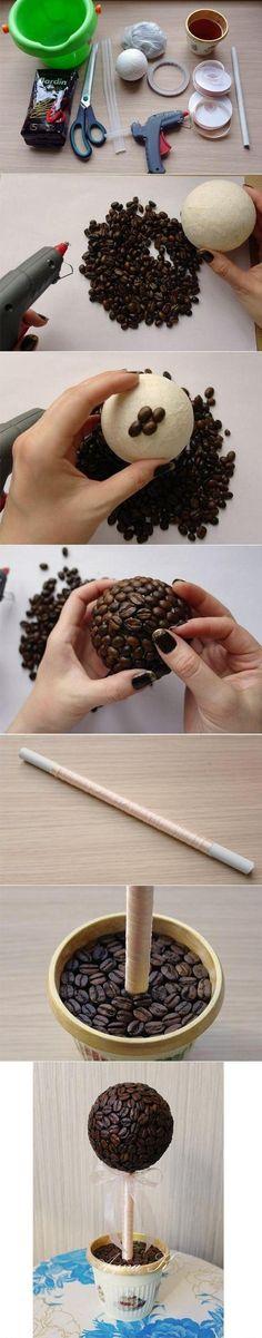Zobacz zdjęcie drzewko z kawy w pełnej rozdzielczości