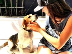 Meet Guy the beagle: Meghan Markle's rescue dog now enjoying royal life Meghan Markle Toronto, The Tig, Royal Life, Rare Pictures, Prince Harry And Meghan, New People, Rescue Dogs, Corgi, Guys