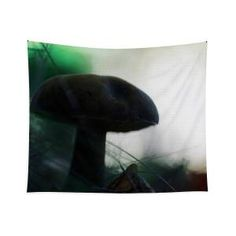 Fallen fungi Tapestry x by Helen Kelly. Our premium tapestries are available in three different sizes and feature incredible artwork on the top surface. Chris Cornell Thank You, Wall Tapestries, Tapestry, Traditional Frames, My Favourite Subject, Wall Spaces, How To Be Outgoing, Fungi, Color Show