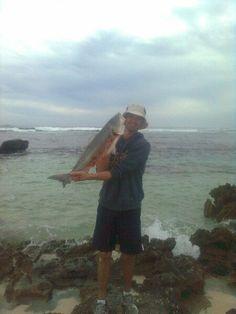 Oz salmon Salmon, Fishing, Atlantic Salmon, Peaches, Chum Salmon, Trout