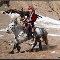 Kazakh eagle hunter, Mongolia.