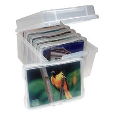 Photo Keeper Box by Iris. $15.49