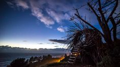 Our exclusiveHUMAN NESToffers one of the best views at Treebones. Are you ready to go beyond the comforts of a yurt and fall asleep cradled in a human-sized nest? This unusual wood-art was created & built by Big Sur artist Jayson Fann. Beginning at $175. Two adult guests. Minimum two nights.