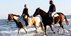 Seabrook Equestrian- horseback riding on the beach!