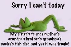 Sorry I can't today... - http://quotesaday.com/funny-quotes/sorry-cant-today/