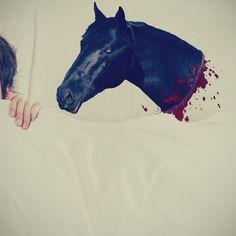 Fancy - Horse Head Pillow Case