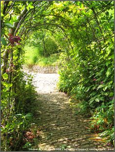 Archway by *Astrocat on deviantART - A garden archway covered in trailing vines. This one seems more doable