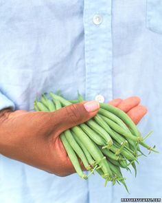 Bean Growing Guide - Martha Stewart Home & Garden Veg Garden, Edible Garden, Vegetable Gardening, Garden Cafe, Fruit And Veg, Fruits And Vegetables, Organic Gardening, Gardening Tips, Organic Farming