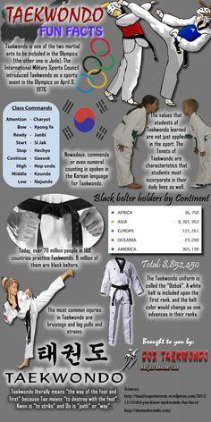 Taekwondo Moves, Olympic Taekwondo, Taekwondo Kids, Taekwondo Classes, Taekwondo Training, Taekwondo Techniques, Martial Arts Techniques, Karate Quotes, Karate Kick