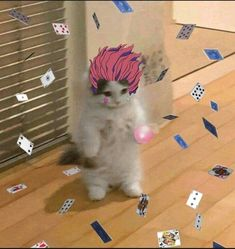 Anime Meme Face, Anime Cat, All Anime, Anime Guys, Hisoka, Hunter Anime, Hunter X Hunter, Wallpaper Memes, Funny Anime Pics