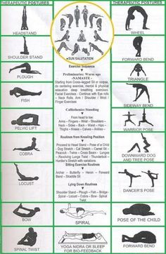 Yoga for beginners #Yoga #MyYogaAsanas