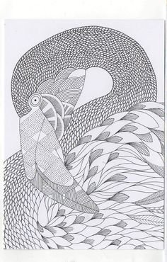 Millie Marotta's Colouring in Card - Flamingo