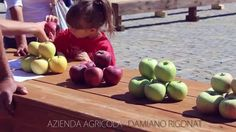 AQUILEIA Bambini in piazza