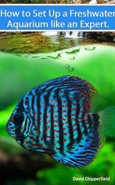 Freshwater Aquariums: How to Set Up One Like an Expert (Aquarium and Turtle Mastery) by David Chipperfield, http://www.amazon.com/dp/B0077ITHD4/ref=cm_sw_r_pi_dp_N5crsb01B9DWA