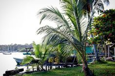 Good morning from one of our favorite quiet spots in #BocasdelToro