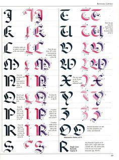 The Art of Calligraphy / Rotunda Capitals Calligraphy Practice, How To Write Calligraphy, Calligraphy Letters, Typography Letters, Caligraphy, Penmanship, Font Alphabet, Handwriting Fonts, Script Fonts