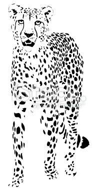 Cheetah vector Royalty Free Stock Vector Art Illustration