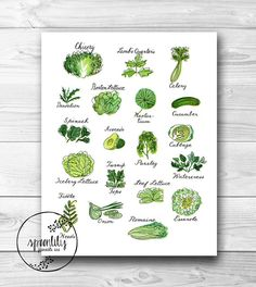 Kitchen Food Art Print  8x10 Print of Vegetable Art by SpoonLily