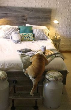 I love this bedroom, but love the dog most!!! How clever to use the footstool!!