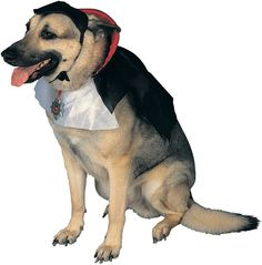 Dogula Dog Costume - Includes: Headpiece, Cape/Medallion. Medium.