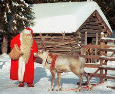 Papá+Noel+/+Santa+Claus+alimentando+a+un++reno+en+la+Laponia+finlandesa.