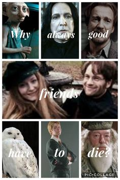 68 Ideas quotes friendship funny harry potter for 2019 Harry Potter Spells, Harry Potter Jokes, Harry Potter Pictures, Harry Potter Fandom, Harry Potter Characters, Harry Potter World, Hogwarts, Harr Potter, No Muggles
