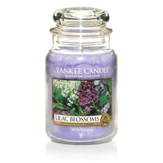 Lilac Blossoms : Large Jar Candle : Yankee Candle : An alluring grove of lavender, white, and deep purple lilacs. Perfume, Chai, Scented Candles, Candle Jars, Candle Holders, Yankee Candle Scents, Yankee Candles, Lilac Blossom, Classic Candles