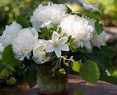 Florali, peonies and clematis