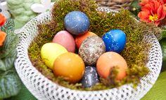 Tweet 26.03.2015 |Ostern steht vor der Türe und was wäre Ostern ohne bunte Ostereier? Man muss die Eier aber nicht immer mit künstlichen Farbstoffen färben, nein, es geht auch anders. Ich möchte euch heute zeigen, wie man Ostereier mit natürlichen Mitteln wie Obst, Gemüse und Gewürzen toll färben kann. Als kleinen Tipp würde ich euch …