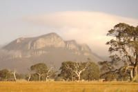 Grampians! Amazing days with good friends. Some funpaths away from the track with our guide took us to spectacular views. Wombats, parrots and more.