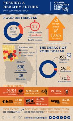 46 Best Nonprofit Annual Report Infographics Images Annual Reports