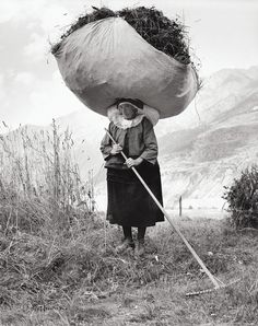 Woman haying in Cogne in the Aosta Valley, 1959. Photograph by Pepi Merisio.
