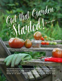 LP Summer Guide 2015- Get that Garden Started!