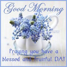 Good Morning, Praying you have a blessed and fruitful Day.
