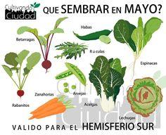 Que sembrar en mayo, en el hemisferio sur(960×785)