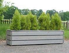 Pflanzkasten Holz Lang L, Oberfläche: Transparent Geölt Grau, Maße: 212 x 50 x 52 cm (L x T x H)