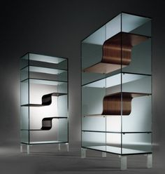 25 Antique and Innovative Bookcase Design Theme : Urbinati Wave Glass Shelving Design