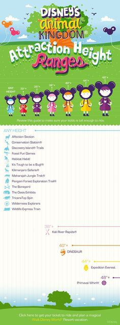 Travelling with children?  Check out the attraction height ranges for Disney's Animal Kingdom before you go!