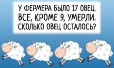 7 логических загадок для взрослых и детей: взорви свой мозг! Family Guy, Comics, Fictional Characters, Cartoons, Fantasy Characters, Comic, Comics And Cartoons, Comic Books, Comic Book