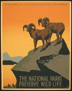 """The National Parks Preserve Wild Life. A WPA Federal Art Project poster for the National Park Service promoting travel to National Parks. This National Park poster shows two bighorn sheep and reads, """" Retro Poster, Poster Vintage, Vintage Travel Posters, Vintage Ads, Vintage Graphic, Poster Poster, Vintage Stuff, Vintage Signs, Wpa Posters"""