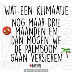 It's Beginning to Look a Lot Like Christmas #darum #VersierJePalmboom