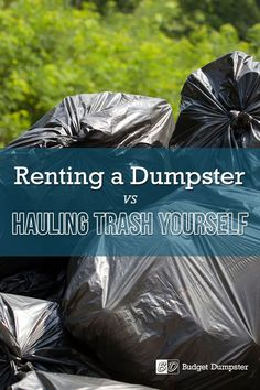 You can either rent a dumpster to get rid of your household debris or go fully DIY and haul your junk to the dump yourself. Use the comparisons below to decide which option makes the most sense for your project. #DIY #homeimprovement #wasteremoval Rent A Dumpster, Waste Removal, Household, Tools, Instruments