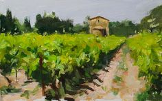 Vineyards and Chapel