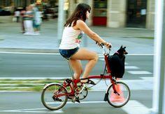 Bark and Bike. A Brompton in Barcelona