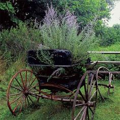 A garden full of salvage | Photo: Richard Felber | thisoldhouse.com | from Turn Salvaged Junk Into Garden Ornaments