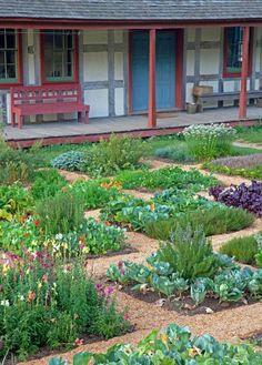 Gemüsebeet planen mit Wegen zwischendurch Quader mit unterschiedlichen Gemüse
